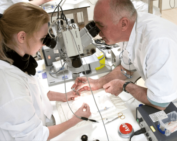 Microsurgical Training Course – RRSSC