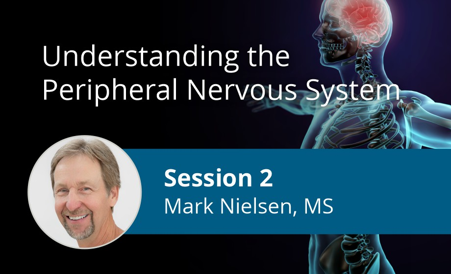 Understanding the Peripheral Nervous System_Mark Neilson